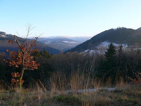 Sauerland, Mountains, Snow, Winter, Hochsauerland