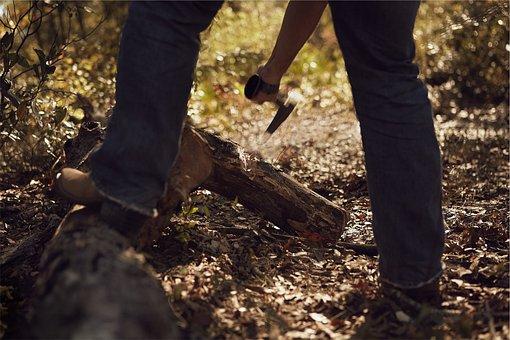 Axe, Chopping, Wood, Lumber, Logs, Lumberjack, Forest