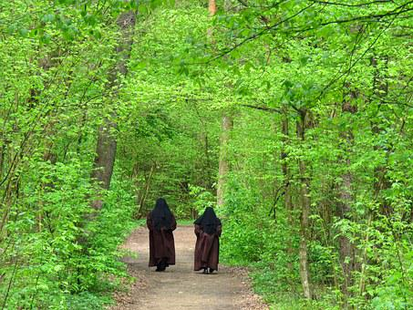 Nuns, Spacer, Spring, Green, Forest, Conversation