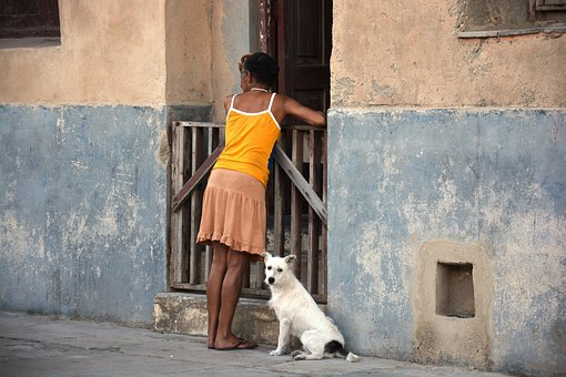 Woman, Dog, Cuba, Neighbor Conversation, Person