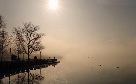 Fog, Sun, Landscape, Mood, Sunrise, Morning Sun, Nature