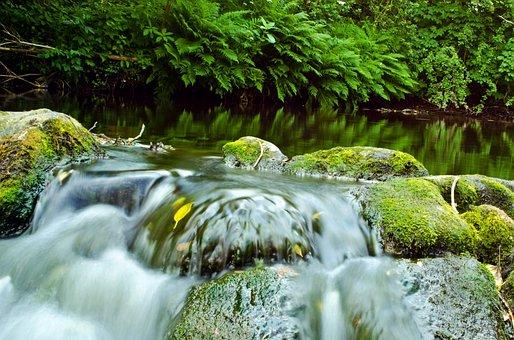 Water, River, Speed, Current, Element, Stones, Wet
