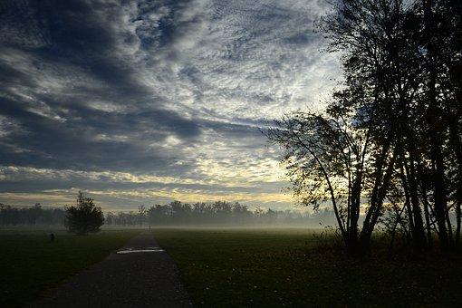 Dawn, Park, Monza Park, Monza, Trees