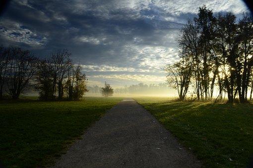 Park, Monza, Dawn, Trail, Trees, Monza Park, Light