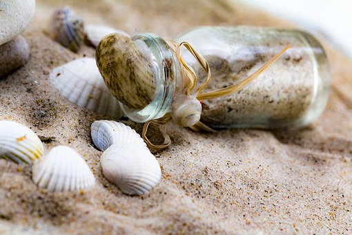 Message In A Bottle, Mussels, Bottle, Sand, Beach