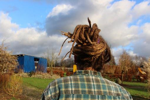 Dreatlocks, Rasta Braids, Hair, Hairstyle