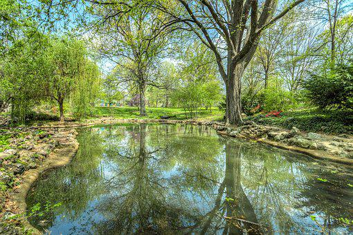 Park, Pond, Reflection, Landscape, Water, Nature, Tree