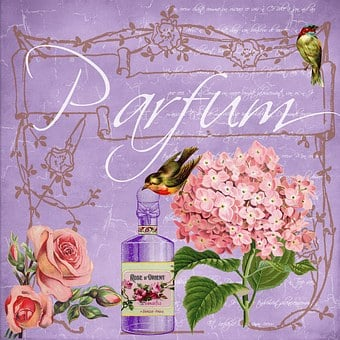 Parfum, Vintage, Collage, Elegant, Flowers, Rose, Bird