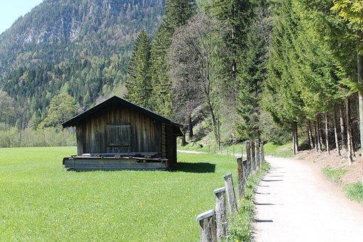 Alm, Meadow, Mountains, Landscape, Pasture, Alpine