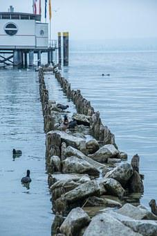 Web, Water, Lake Constance, Immenstaad, Investors