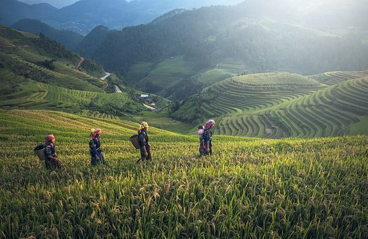 Agriculture, Asia, Bali, Cambodia, China, District
