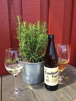 Sweden, Summer, Drink, Patio, Rosemary, Beer, Cider