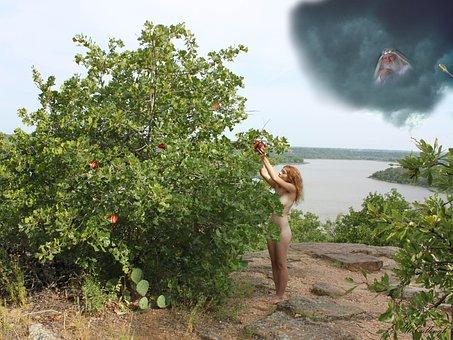 Garden Of Eden, Eve, Eden, Fruit, Temptation, Religion