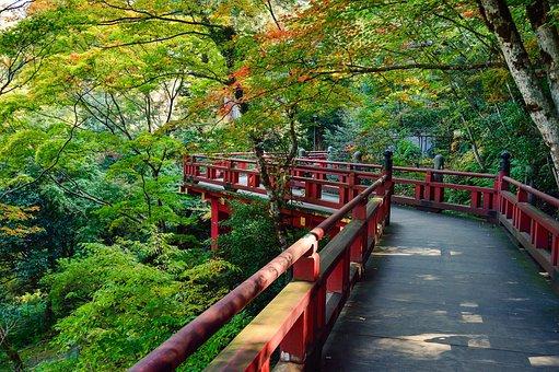 Japan, Landscape, Natural, Outdoors, Views Of Japan, K