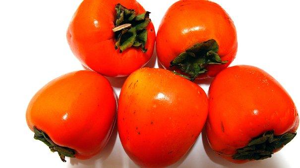 Persimmon, Fruit, Harvest, Yarn