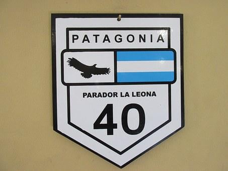 Patagonia, Poster, Cold, Ave, Flight, Wings, Bird, Fly