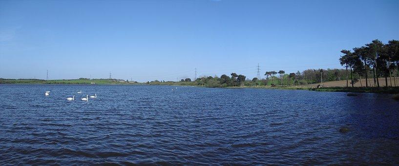 Loch, Gelly Loch, Scotland, Scenic, Lake, Water, Swans