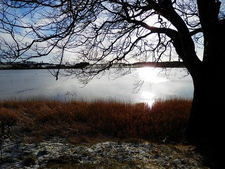 Gelly Loch, Loch, Lake, Nature, Landscape