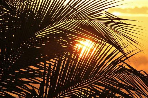 Sun Of Jamaica, Caribbean, Paradise, Sun, Sunset, Sky