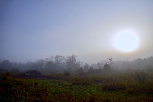 Sun, Mist, Field, Fog, Landscape, Nature, Morning