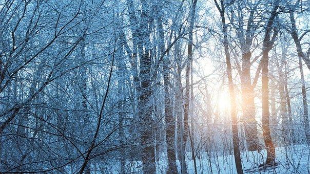 Winter, 2017, Sunset, Snow, Nature, Landscape, Sun, Sky