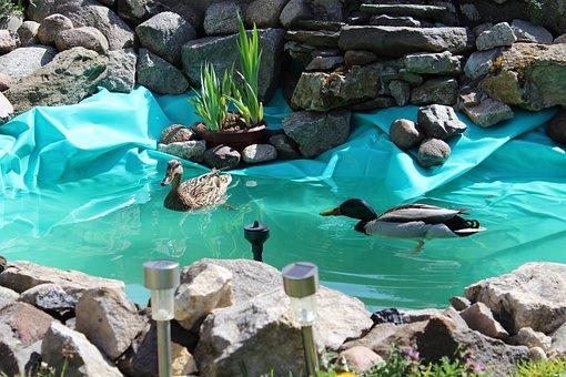 Ducks, Bulls Eye-water, The Stones, Skalnik, Duck Parka
