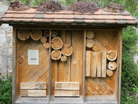 Insect Hotel, Insect, Insect House, Hibernation Help