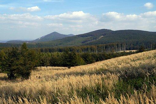 Slovakia, Little Carpathians, Nature, Country, Grass