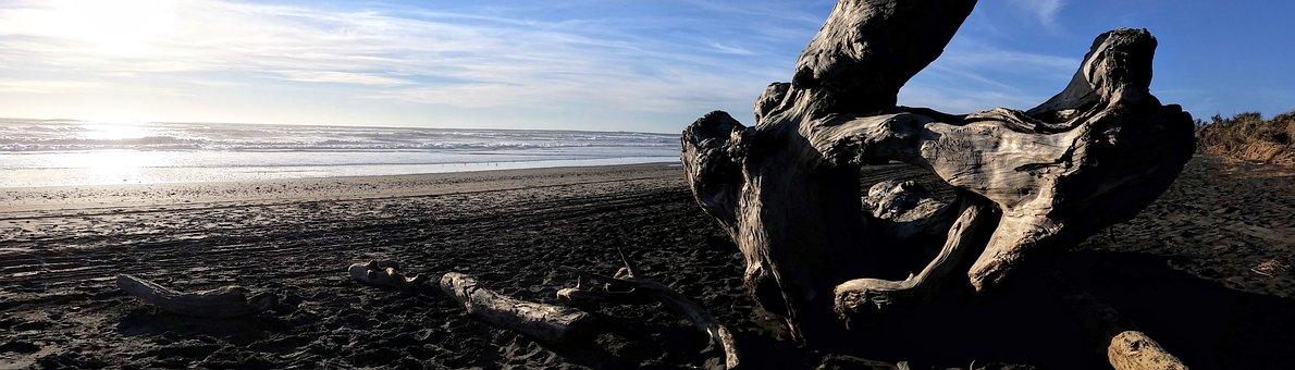 Ocean, Northwest, Pacific, Landscape, Coast, Water, Sea