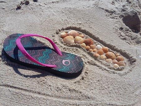 Summer, Flip Flops, Sand, Shells, Shell, Beach