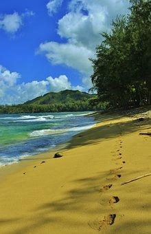 Beach, Tracks, Sandy Beach, Sand, Footprints, Hanalei