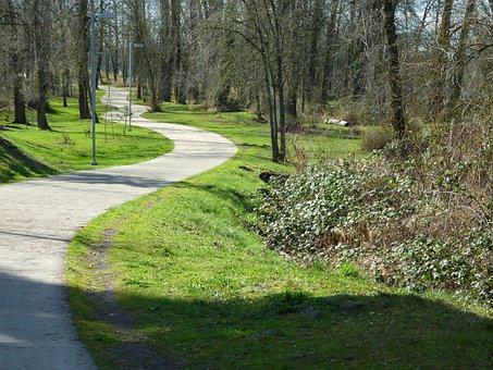 Bike, Path, Route, Bicycle, Bicycle Path, Bikeway