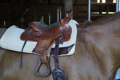 Saddle, Western Saddle, Saddled, Horse, Ride, Cowboy