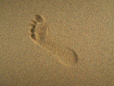Seaside, Sand, Beach, Summer, Water, Nature, Sea