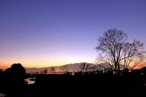 Silhouette, Evening, Eve, Tree, Dusk, Dawn