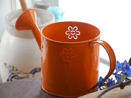 Orange, Watering Can, Watering, Can, Spring, Garden
