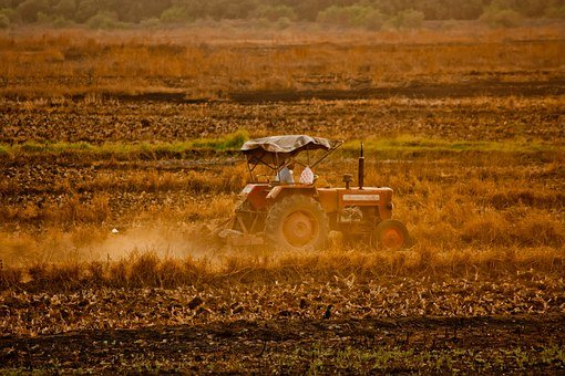 Tractor, Farmer, Field, Agriculture, Crop, Harvest