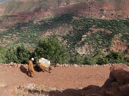 Man, Morocco, Way, Transport, Poor, Mount Atlas