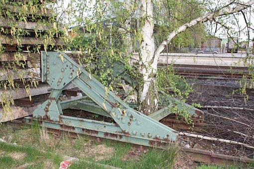 Railroad Track, Paradox, Birch, Tree, Overgrown