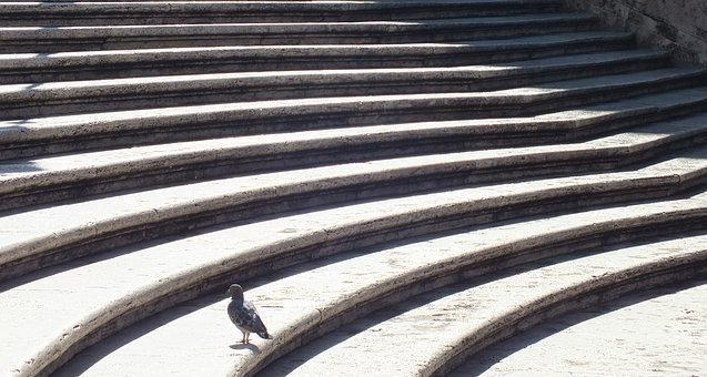 Spanish Steps, Pigeon, Rome, Stairway, Staircase