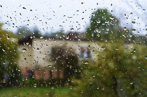 Rain, Drops, Drops Of Water, The Background, Pane