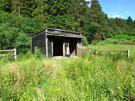 Wooden, Hut, Stable, Shed, Barn, Byre, Riding, Stall