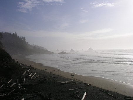 Ocean, Oregon, Pacific, Coast, Waves, Coastline