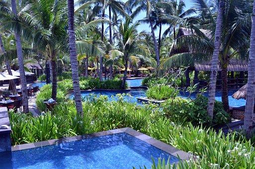 Hotel Swimming Pool, Resort Pool, Outdoor Pool, Pool