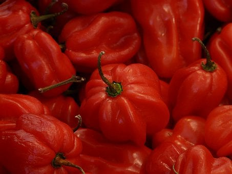 Habaneros, Red, Vegetables, Sharp, Capsicum Chinense
