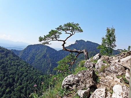 Mountains, Landscape, Trail, Way, Panorama, Nature