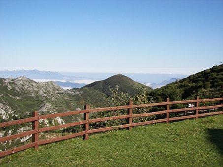 Prado, Grass, Nature, Landscape, Green, Field, Prairie