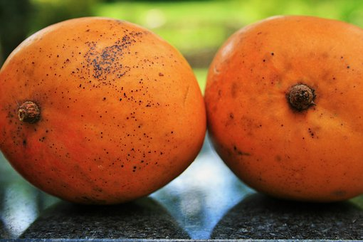 Fruit, Mangoes, Round, Orange, Fresh, Tropical