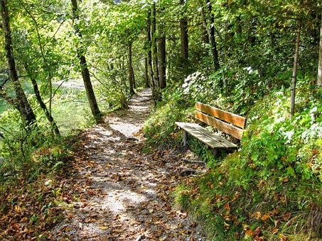 Bank, Bench, Seat, Wooden Bench, Resting Place