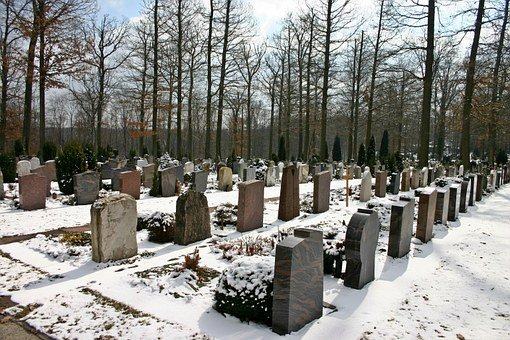 Cemetery, Woodland Cemetery, Forest, Tree, Graves